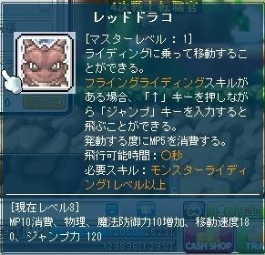 マスターレベル1….jpg